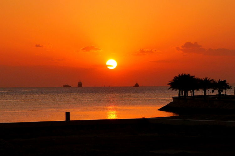 Beauty In Nature Horizon Over Water Orange Color Qatar Qatarlife Scenics Sea Silhouette Sun Sunrise Sunrise And Clouds Sunrise Silhouette Sunrise_sunsets_aroundworld Tranquil Scene Tranquility Water Sillhouette Palm Tree Bay Morning Sun Wonderful Morning Red Sky Red Clouds Sun Reflection On Water The City Light