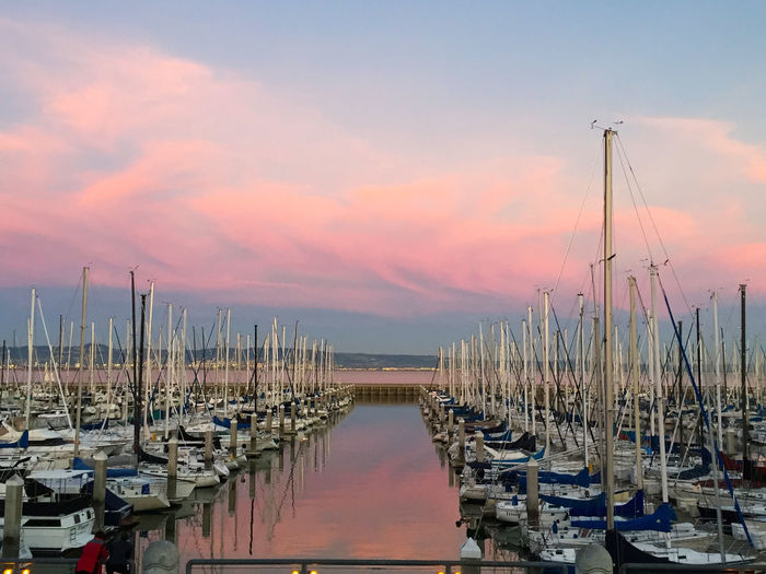 SBYC - Sunset Marina View Beauty In Nature Boat Cloud - Sky Harbor Idyllic Marina Mast Nature Nautical Vessel No People Outdoors Pink Clouds Pink Sunset Sailboat San Francisco Hidden Gems  San Francisco Bay Bridge Sky South Beach Yacht Clu Sunset Tranquil Scene Tranquility Water