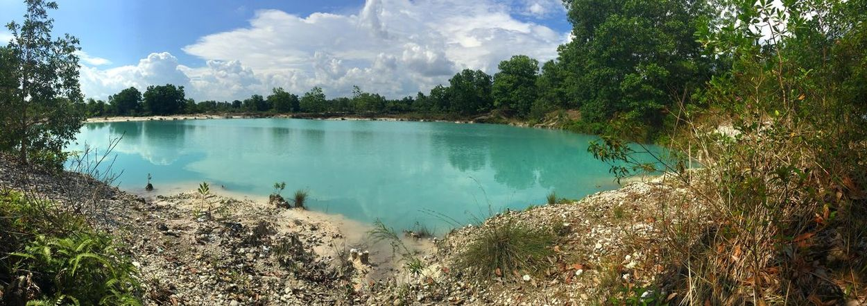 Sweet Panorama. Tree Nature Water Beauty In Nature Scenics Tranquil Scene Tranquility Idyllic Day No People Lake Outdoors Landscape Sky Panorama IPhoneography Iphone6splus Borneo Island