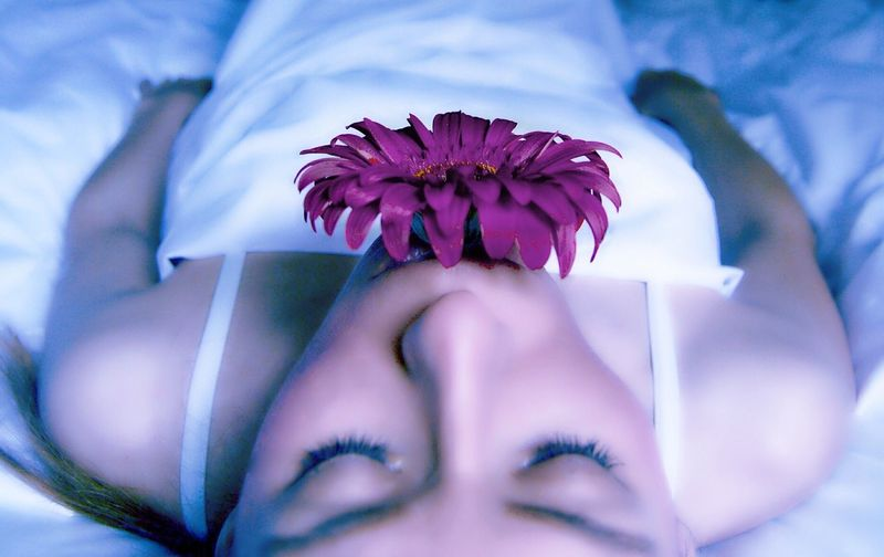 Close-up of woman with purple gerbera daisy in mouth lying on bed