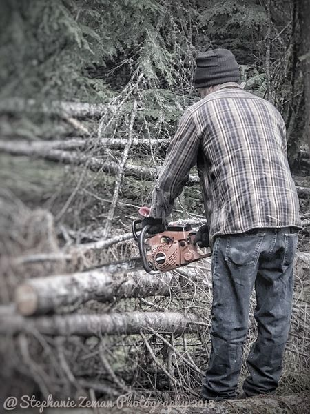 All In A Days Work Lumberjack Cutting Wood One Person Men Day Real People Nature Casual Clothing Outdoors Tree Jeans Standing Occupation Lifestyles
