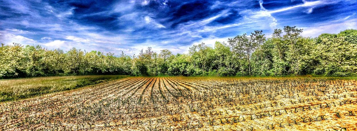 Hdr_Collection Farmland Panoramic Shot Parco Del Curone