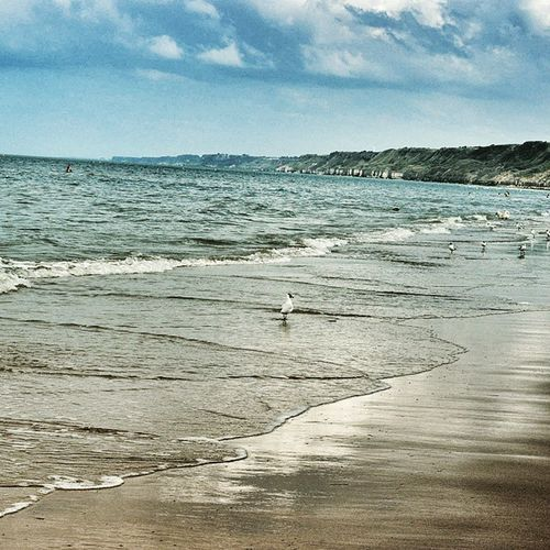 Tagsforlikes Tflers Tweegram Photooftheday 20likes Amazing Follow4follow Like4like Instacool Instago All_shots Follow Webstagram Colorful Style Ireland Pretty Wonderfull Sea Normandy