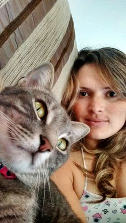 Cute Pets My Cat! Cat