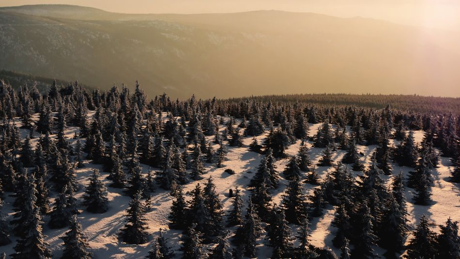 Evening view from Smrk, Czech Republic 🇨🇿 Winter Snow EyeEm Selects Landscape Sunlight Nature Beauty In Nature Outdoors Scenics Sunset No People Mountain