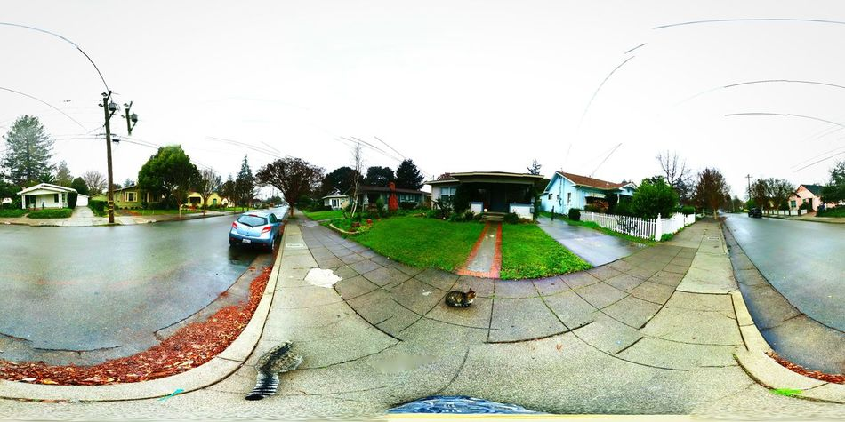 Taking Photos Around The House Taking Pictures Aroundtown Photo Sphere