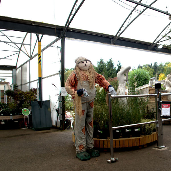 Friendly Guy Entrance Gate Full Length Garden Centre Greenhouse Indoors  Inteligent Attendant Medical Cannabis Plants White Lady Statue