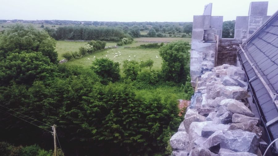 We're the kings of the castle. The view from the tower roof