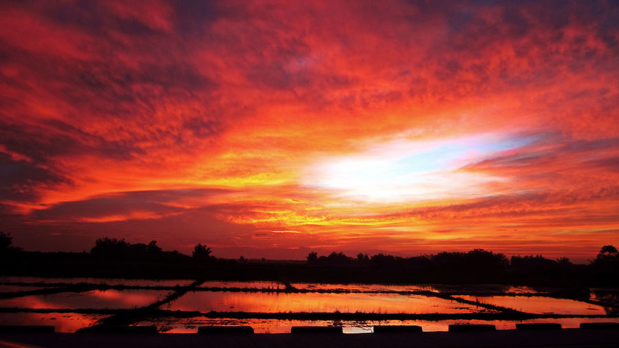 Afternoon Beautiful Nature Good Afternoon Good Afternoon! Nature Peaceful Reflection Rice Field Rice Fields  Serene Sunset Vermillion Vermillion Sky Perspectives On Nature