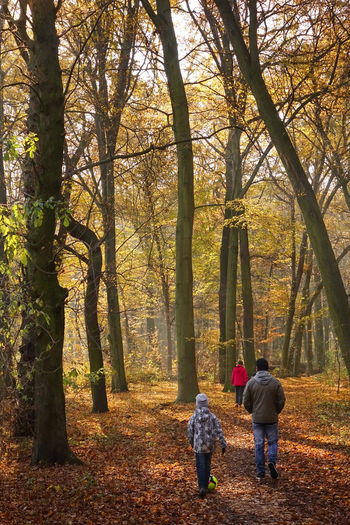 Adult Autumn Beauty In Nature Change Day Forest Friendship Full Length Growth Leaf Leisure Activity Lifestyles Nature Outdoors People Real People Rear View Standing Togetherness Tree Two People Walking Warm Clothing Women Young Women