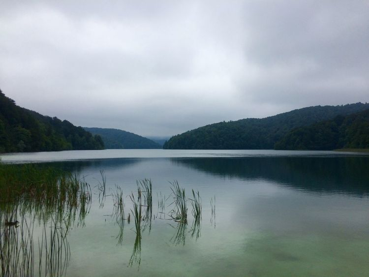 Beauty In Nature Distant Horizontal Symmetry Lake Lakeshore Majestic Nature Outdoors Plitvice National Park Reflection River Riverbank Scenics Standing Water Symmetry Tranquil Scene Tranquility Tree Water Waterfront