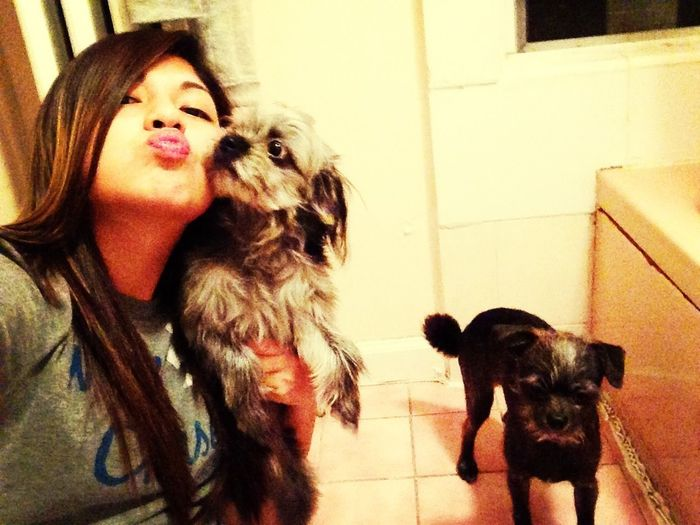 In Love With My Dogs