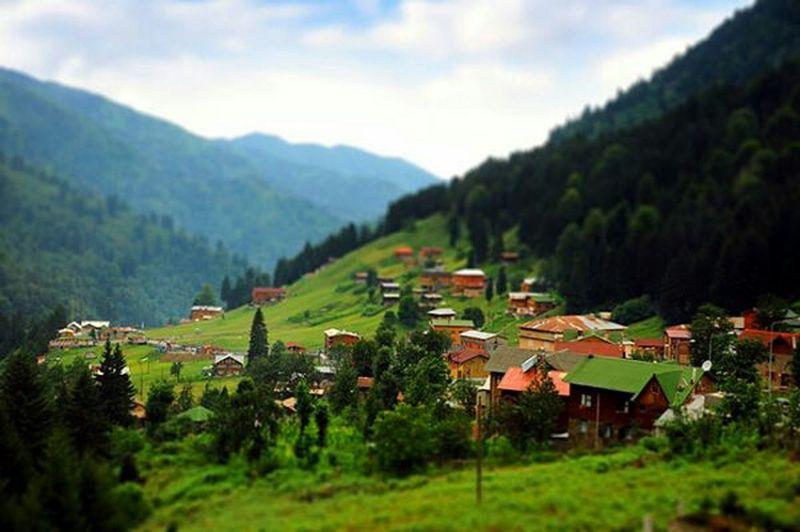Turkey-Rize SibelKorkmaz Fotograf Aşk Müthiş