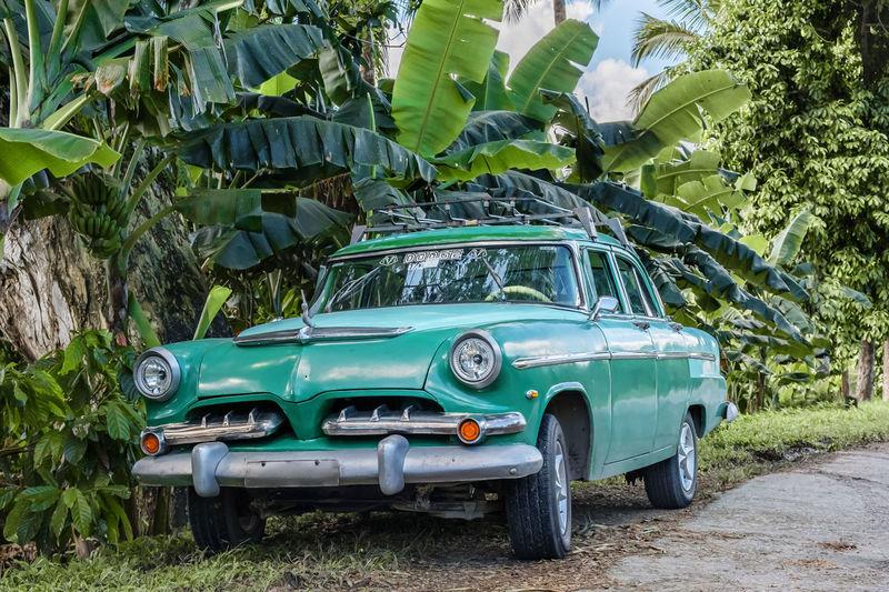 Baracoa, Cuba-