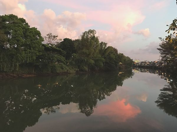 Life In The River Reflection Scenics Beauty In Nature Waterfront Sky Tranquil Scene Sunset