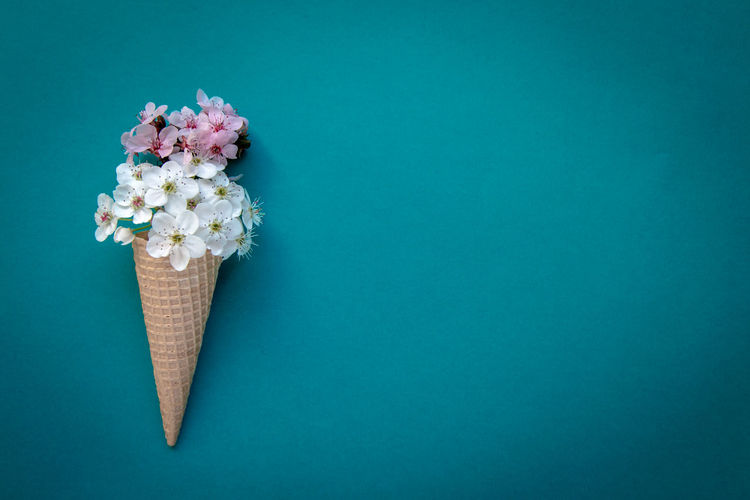 Close-up of ice cream cone with flowers against blue background