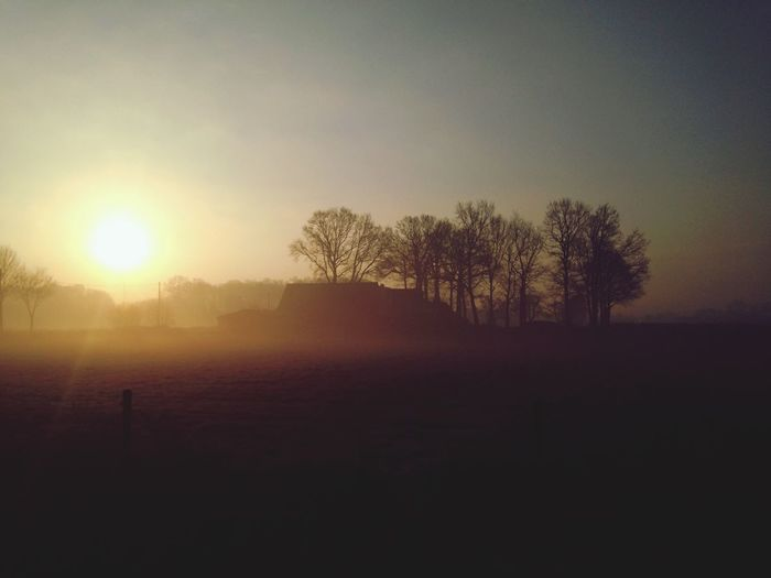 Morgenrunde First Eyeem Photo