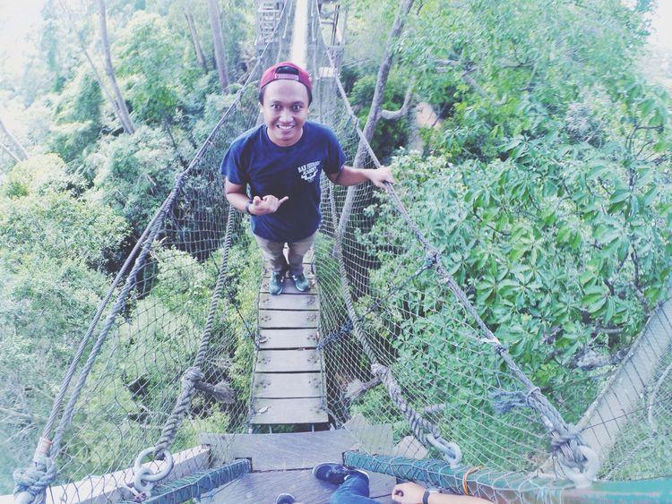 canopy bridge Bukitbangkirai Balikpapan