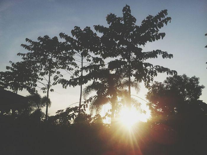 Matahari, bakar aku Connected With Cilacap Sunrise