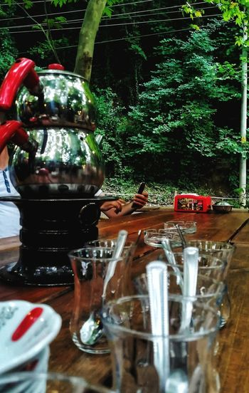 Tea Glass EyeEm Best Shots EyeEm Nature Lover Green Garden Table Picnic Forest Day Nature Plant Water Drink Bottle Close-up Shot Glass Tonic Water Blooming Growing Plant Life The Great Outdoors - 2018 EyeEm Awards The Street Photographer - 2018 EyeEm Awards