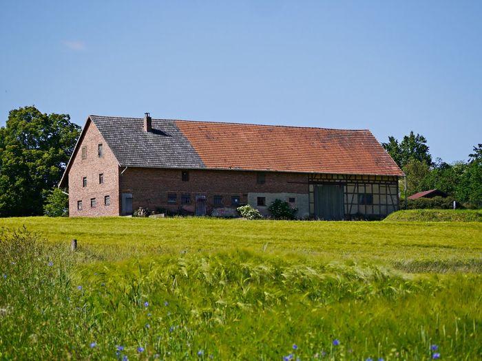 House on field against clear sky