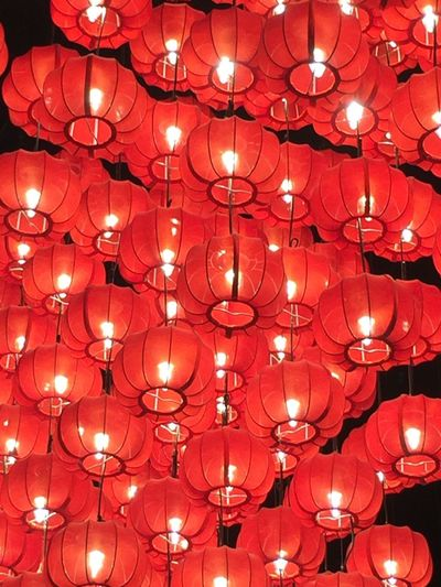 Chinese lanterns Red Chinese Lantern Lantern No People Illuminated Indoors  Traditional Festival Large Group Of Objects Night