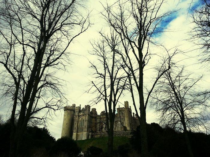 Castle of Arundel