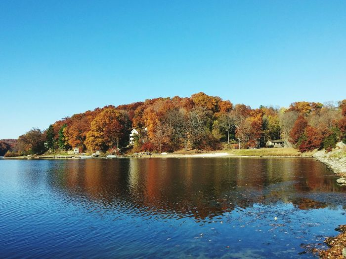 Enjoying The Sun This Week On Eyeem Connecticut Popular Photo Lake View Showcase: November Fall Colors Reflection Candlewoodlake Reds Lakeview Water Reflections Serene Outdoors Blue Wave Colour Of Life