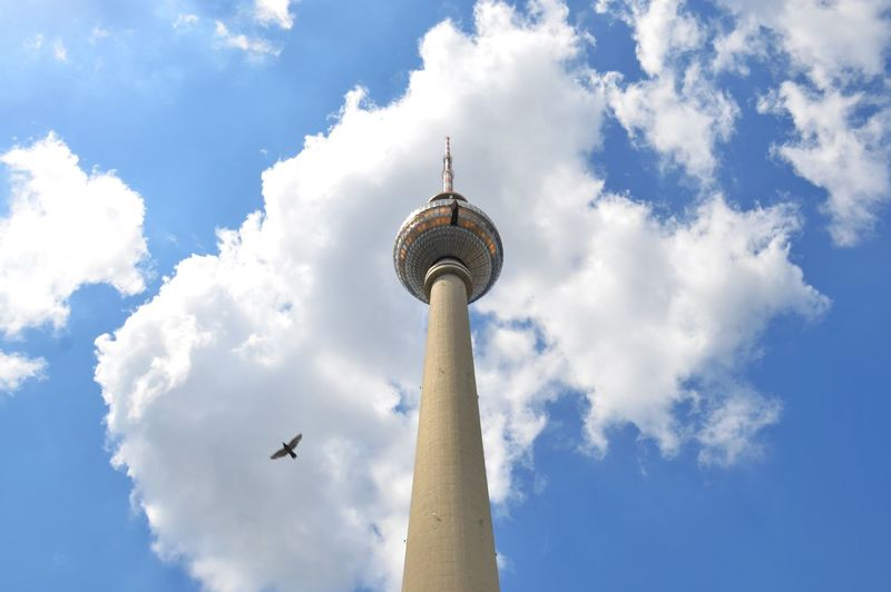 Cloud - Sky Sky Architecture TV Tower Berlin Bird Flying Germany High Tower Low Angle View Clouds Discover Berlin