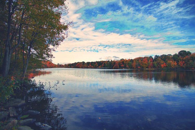 Fall Seasonscollection