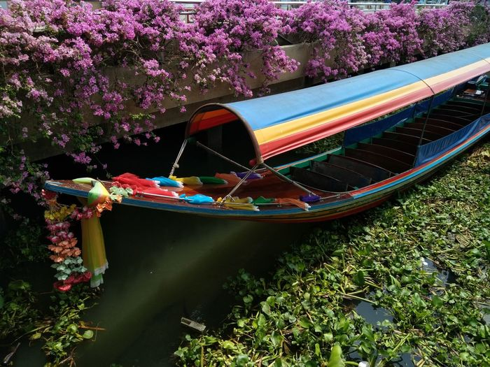 Thai boat Thai Boat เรือหางยาว Adventures In The City Flower Tree Multi Colored Water Boat Gondola - Traditional Boat Water Vehicle