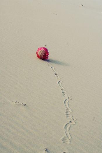 beach ball? Sand FootPrint Tranquility Outdoors No People