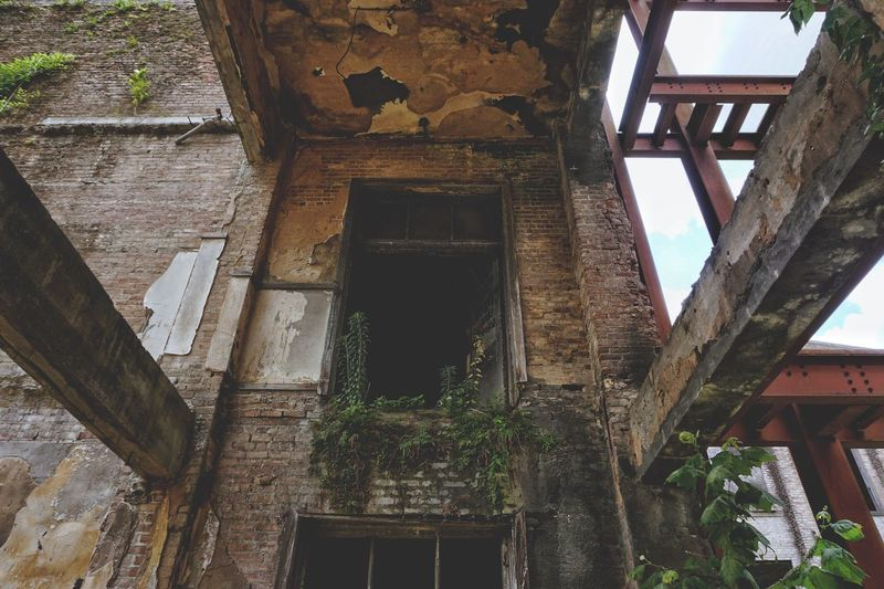 Life will always find away. Weeds Brick Abandoned Iron Beam Abandoned Places Urban Decay Falling Apart Architecture Built Structure Low Angle View No People Day Building Building Exterior Abandoned Nature Old Outdoors Plant Run-down Obsolete Weathered History Architectural Column Sunlight Deterioration