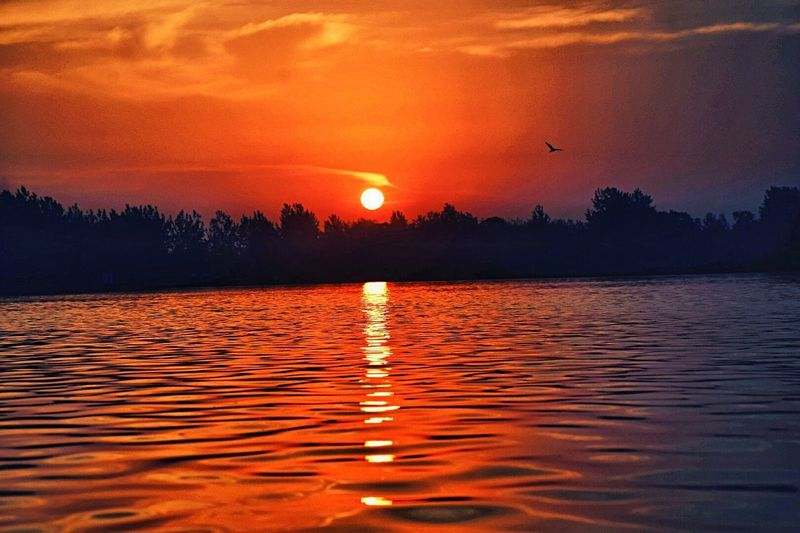 Sunset Orange Color Reflection Moon Landscape Beauty In Nature Nature Red Scenics Lake Tranquility Sun Tranquil Scene Outdoors Water Dawn No People Vacations Beauty Tree