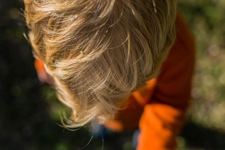 Boy holding rake in yard