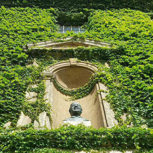 Architecture Architecture Art ArtWork Beauty In Nature Building Exterior Built Structure Day Design Flower Formal Garden Freedom Garden Green Color Growth High Angle View Ivy Leaf Life Nature Nelsonmandela  Outdoors Plant Sculpture The Architect - 2016 EyeEm Awards