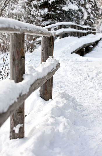 Close-up of frozen wooden post on snow covered field