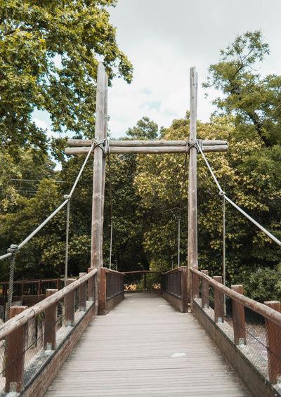 Walkway bridge in forest against sky
