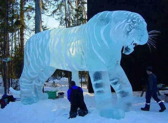 Sculpted Ice Nice ,,,,,,,