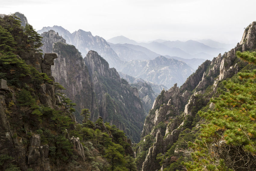 Yellow mountains in China Beauty In Nature China Landscape Mountain Nature Outdoors Scenery Yellow Mountain