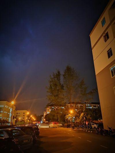 🌩️ City Cityscape Illuminated Tree Christmas Lights Christmas Winter Celebration Christmas Decoration Sky