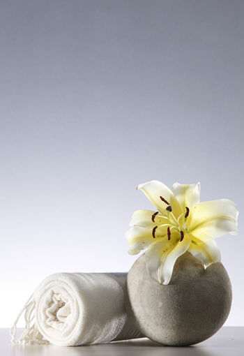 yellow flower lily on the round vase with towel Flower Flowering Plant Freshness Plant Close-up Lily Lily Flower Floral Petal Nature Summer Blossom White Spring Decoration Color Flora Blooming Bright Bouquet Leaf Green Bud Single Object Pretty Elégance Towel Round Stone Pebble Zen Beauty In Nature Indoors  Flower Head Studio Shot No People Vase Hygiene Massage Copy Space Still Life White Background