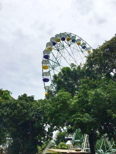 Amusement Park Amusement Park Ride Tree Ferris Wheel Sky Day Leisure Activity Big Wheel Outdoors