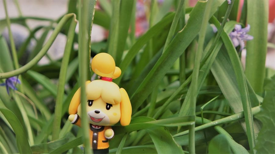 Close-up of yellow toy in grass