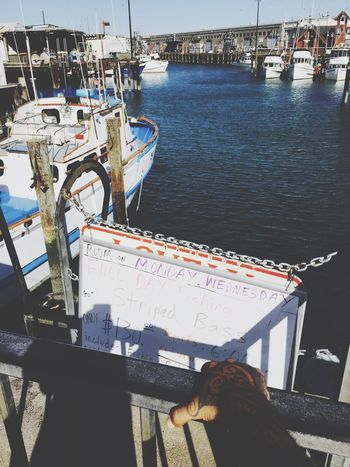 Wharf Check This Out That's Me Hanging Out Hello World Relaxing Taking Photos Enjoying Life Hi! Walking Around The City  Walking Around Homie Huff Iphone6plus IPhone IPhoneography Iphone 6 Plus Tattoos Selfmade Tattooartist  Ocean Boat Boats Frisco Water Ocean View OceanCity