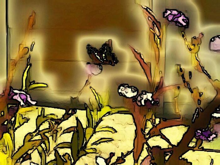 Butterfly ❤ Butterfly Collection Nature Experimental Colorsplash Lightexplosion LightExposure Learning Photography Lovephotography  Experimental Edit Softness ArtWork Pretty♡