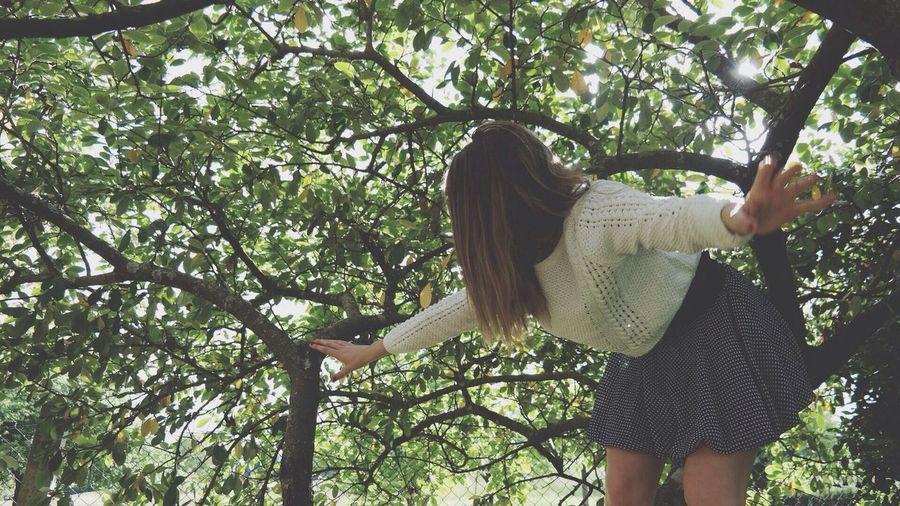 People walking on tree trunk
