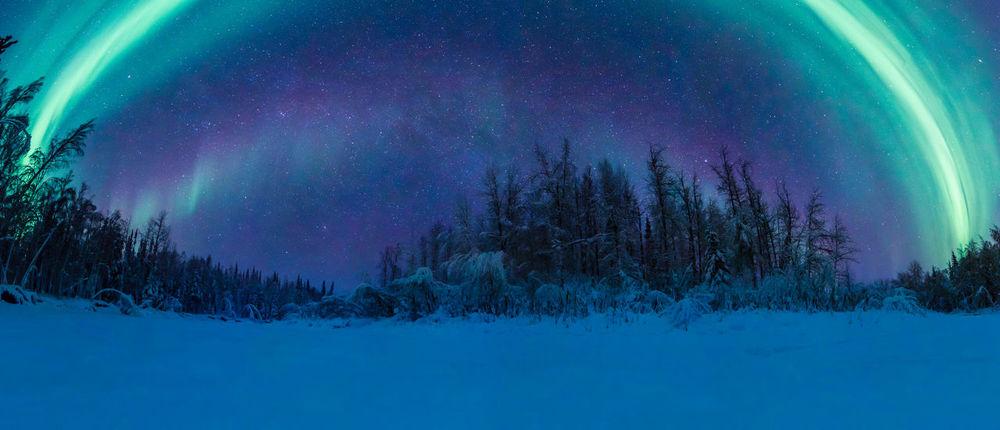 Aurora Borealis Epic EyeEm Best Shots EyeEmNewHere Fine Art Photography Landschaft Nature Northern Lights Panorama Travel Alaska Arctic Astronomy Astrophotography Explore Fairbanks Landscape Outdoors Peaceful Sky Snow Star - Space Travel Destinations Winter Go Higher The Traveler - 2018 EyeEm Awards