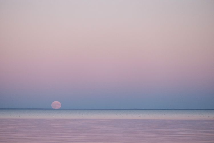 Super moon rising. Lake Winnipeg Supermoon2015 Supermoon Moon Lune Check This Out Beautiful Nature Automne FUJIFILM X-T1 Fujifilm_xseries