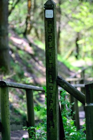 Day Focus On Foreground Footpath Footpath Sign Green Color In The Woods Nature No People Outdoors Tranquility The Great Outdoors - 2017 EyeEm Awards